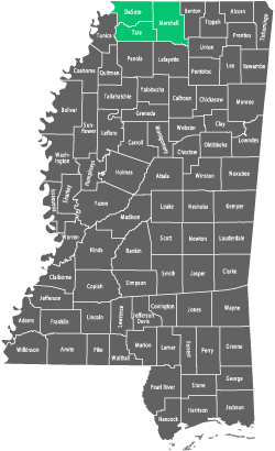 Availability by County in Mississippi